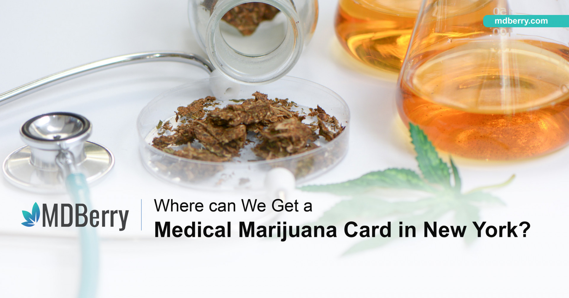 Where can we get a Medical Marijuana Card in New York?