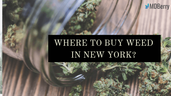 WHERE TO BUY WEED IN NEW YORK?