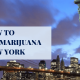 HOW TO PURCHASE MARIJUANA IN NEW YORK