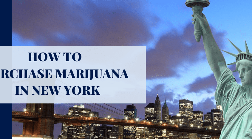HOW TO PURCHASE MARIJUANA IN NEW YORK (2)-min