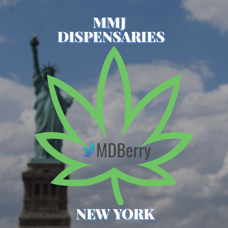 Medical Marijuana Dispensaries New York State mdberry copy 1