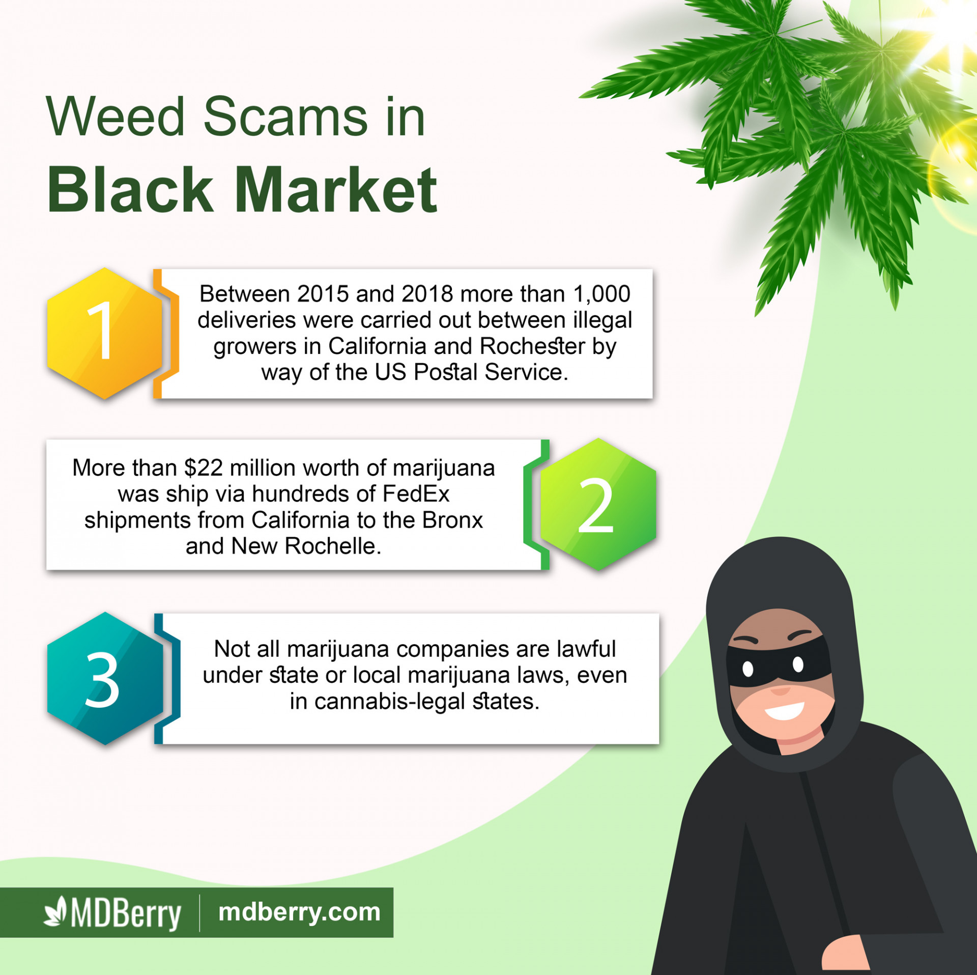 Black Weed Market in New York