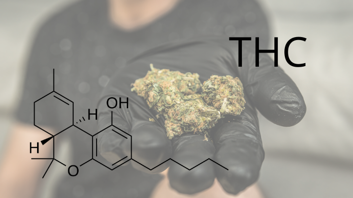 Surprising Facts About THC