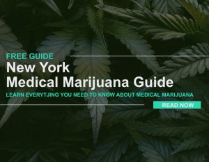 guide to medical marijuana in ny