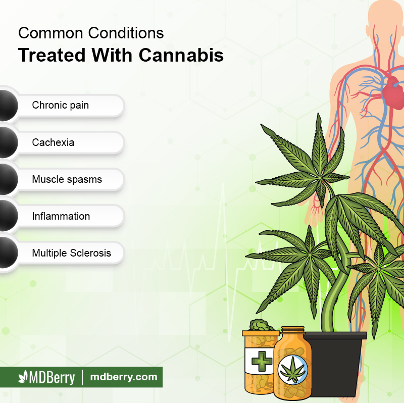 Conditions Treated With Cannabis