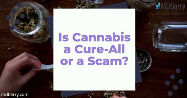 Cannabis a Cure All