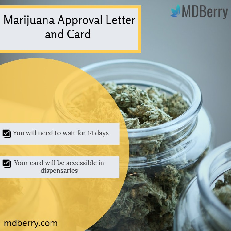 Marijuana Approval Letter and Card