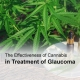 Cannabis glaucoma treatment