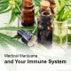 Medical marijuana for immune system