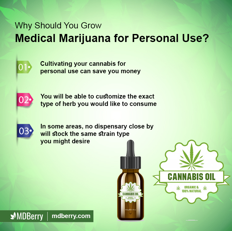 Usage of Medical Marijuana
