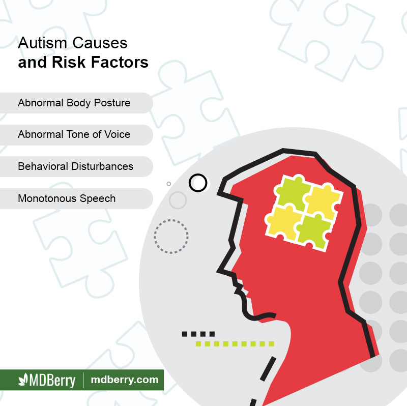 Autism Causes and Risk Factors