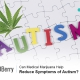 Reduce Symptoms of Autism