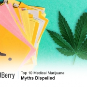 Top 10 Medical Marijuana Myths Dispelled