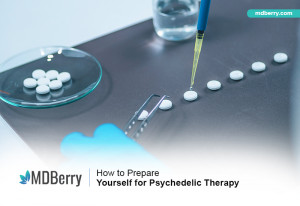 Psychedelic Therapy